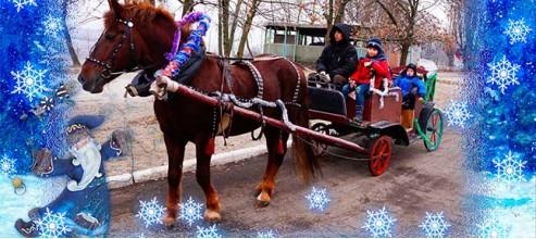Веселая коляда. Праздничные зимние развлечения